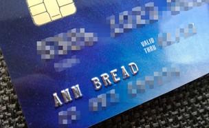 כרטיס האשראי (צילום: אן פת, פייסבוק)