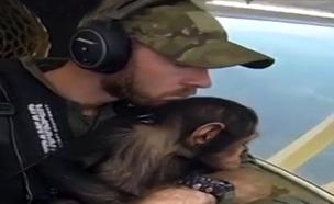 צפו: גור הקופים שחולץ בתא הטייס (צילום: sky news)