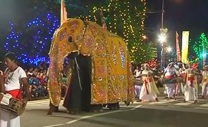 צפו בחגיגות הצבעוניות בסרי לנקה (צילום: רויטרס)