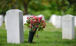 קבר ופרח (צילום: shutterstock | Orhan Cam)