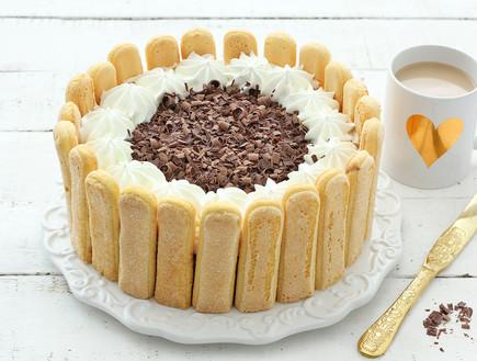 עוגת בישקוטים ופודינג שוקו-וניל - סגורה