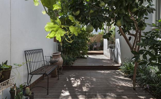 בית ברשלצ, עיצוב שלומית גליקס, חוץ (צילום: עודד סמדר)