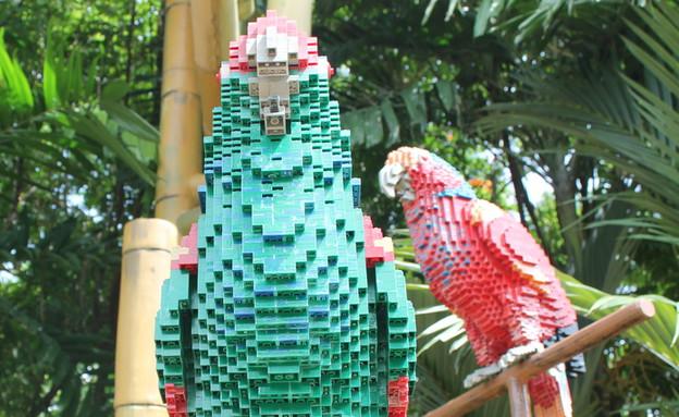 לגו ציפורים (צילום: LittleElephant-Shutterstock)