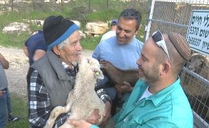 רועה צאן שגנבו לו את העדר (צילום: החדשות)