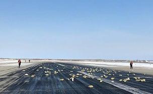 אוצר נפל ממטוס - התושבים יצאו בקור לחפש. צפו (צילום: מתוך האתר סיביר טיימס)