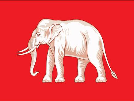 פיל מעטר את דגל תאילנד הישן