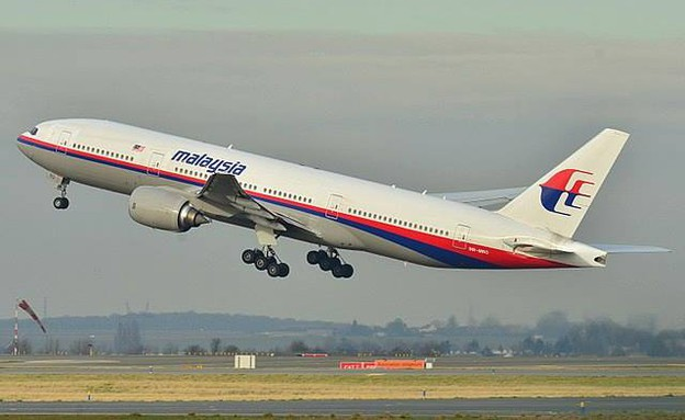 המטוס המלזי (צילום: Facebook/Flight Level 410)