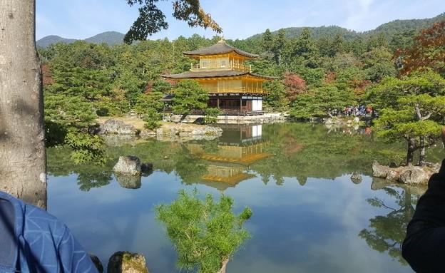 מקדש הזהב בקיוטו (צילום: גיורא ברנט)