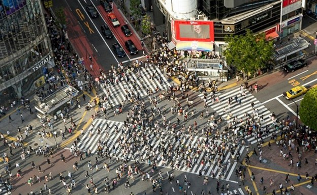מעבר החציה ברובע השיבויה בטוקיו (צילום: גיורא ברנט)