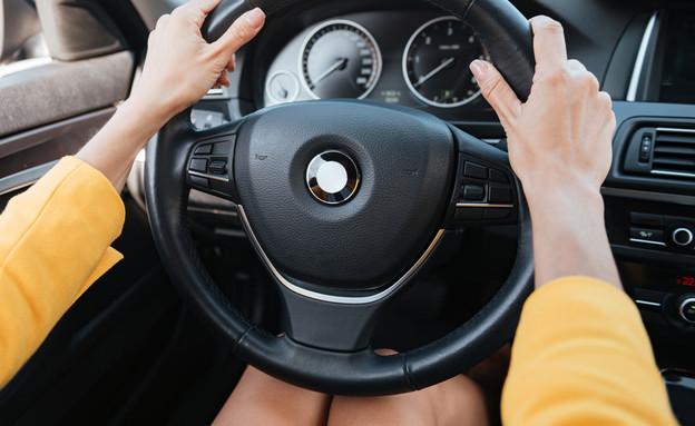 ידיים על ההגה (צילום: Dean Drobot, Shutterstock)