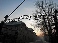 מחנה אושוויץ, ארכיון (צילום: רויטרס)
