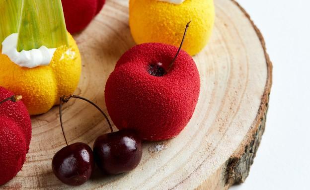 פלטת פירות ממוס יוגורט וג'לי פירות (צילום: אמיר מנחם, אוכל טוב)
