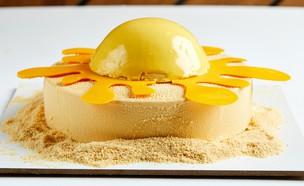 עוגת שמש עם משמש ומרציפן (צילום: אמיר מנחם, אוכל טוב)