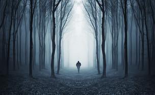 נעלמים (צילום: kateafter | Shutterstock.com )