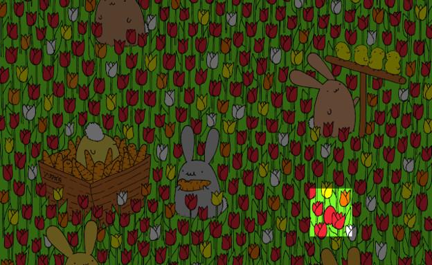 ביצה נסתרת (צילום: Dudolf)