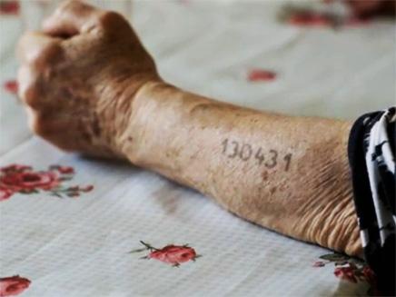 צפו: המדריך לזכויות ניצולי השואה (צילום: יוטיוב)