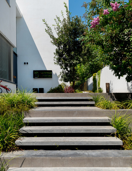 בית ברמת השרון, ג, עיצוב עילית גרינברג, חוץ - 20 (צילום: גלית דויטש)