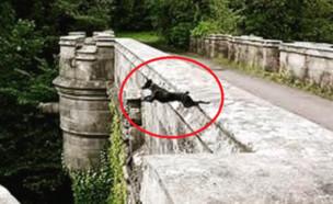 גשר מקולל (צילום: אינסטגרם\thehiddenreality_)