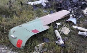 כלי הטייס הישראלי שהתרסק במארס (צילום: ללא)