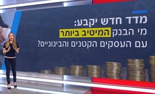 צפו בנתונים של המדד של משרד הכלכלה (צילום: החדשות)