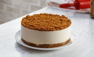 עוגת גבינה לוטוס (צילום: לוטוס)