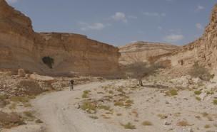טיול אופניים בערבה (צילום: יחסי ציבור)