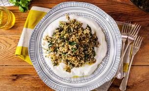 אורז יווני (צילום: בבושקה הפקות)