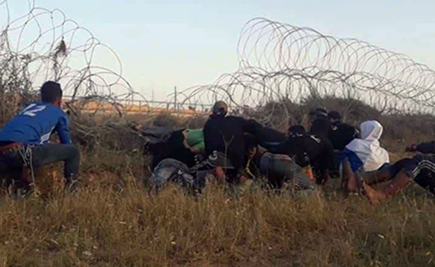 צעירים ניסו לחתוך את התלתלית בגבול