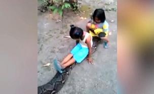 ילדות באינדונזיה רוכבות על נחש