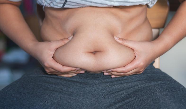 השמנה בטנית (צילום: Kritsana Karakate, shutterstock)