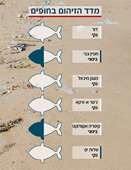 מדד חופים