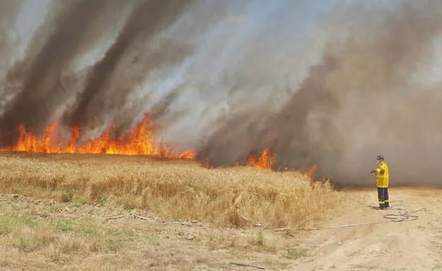 שריפה בשדות קיבוץ סעד (צילום: כרמל הלפרין)