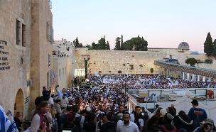 נחשף: סוכל פיגוע ביום ירושלים (צילום: מתי עמר / TPS)