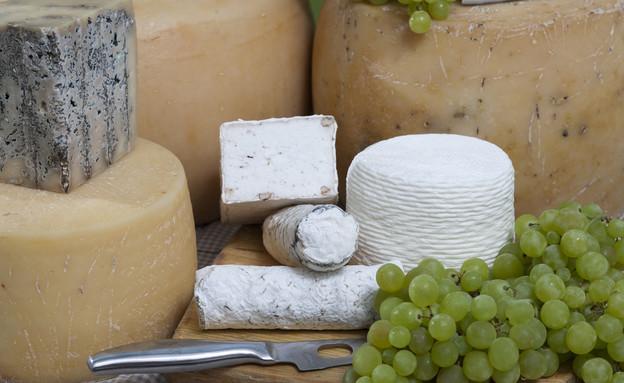 גבינות מחלבת אלטו (צילום: אנטולי מיכאלו,  יחסי ציבור )