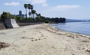חוף ללא שם (צילום: Instagram/seiji_sagan17)