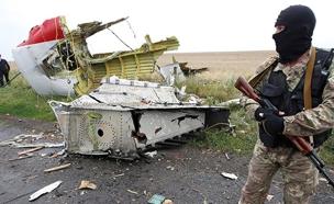 שרידי המטוס המלזי (צילום: SKY NEWS)