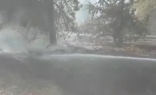 """תיעוד: שריפות בארבעה מוקדים (צילום: דוברות קק""""ל)"""