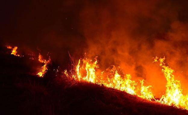 שריפה בשדה (צילום: neenawat khenyothaa, shutterstock)