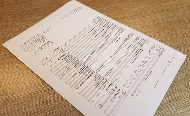 תלוש שכר (צילום: מערכת mako)