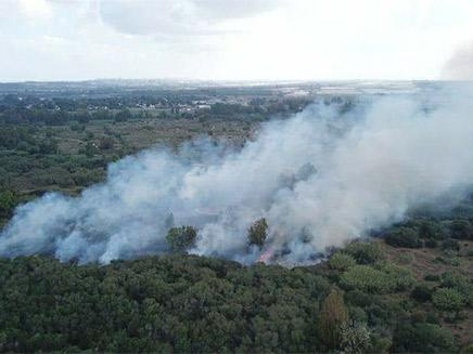 שריפה בשמורת כרמיה בשבת (צילום: אמנון זיו)
