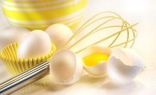 ביצים ומטרפה (צילום: ShutterStock)
