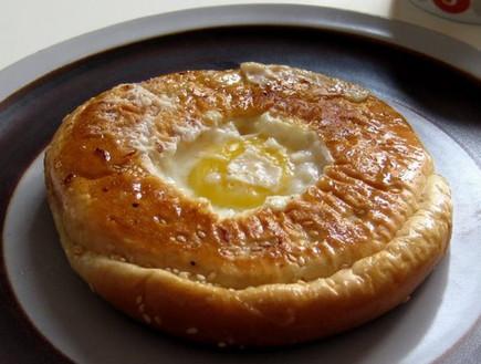 ביצה בקן (צילום: דנה בר-אל שוורץ)