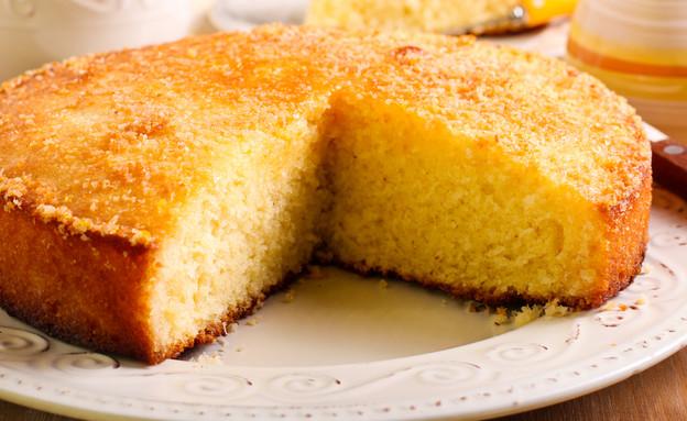 עוגה בחושה (צילום: MShev, shutterstock)