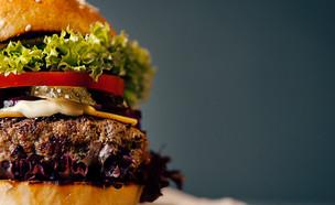המבורגר בלחמניה (צילום:  Mikhaylovskiy, ShutterStock)