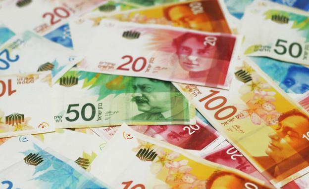 כסף מזומן (צילום: By Dafna A.meron, shutterstock)