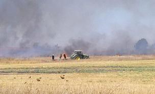 שריפה בעוטף עזה, היום (צילום: גלי כוכבא באדיבות דוברות התנועה הקיבוצית, חדשות)
