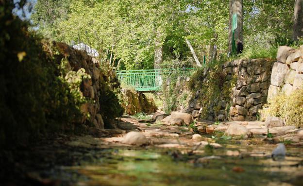 גן לאומי עין חמד (צילום: רשות הטבע והגנים)