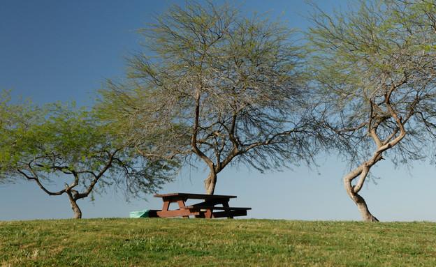 פארק אשכול (צילום: רשות הטבע והגנים)