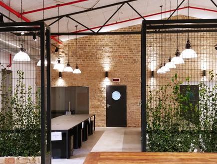 משרדים יפים, אייטם 1 - 2 (צילום: ליאור דנצינג )