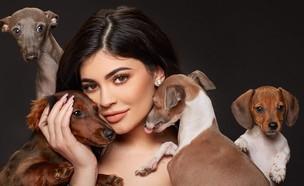 קיילי ג'נר והכלבים (צילום: מתוך עמוד האינסטגרם של קיילי ג'נר)